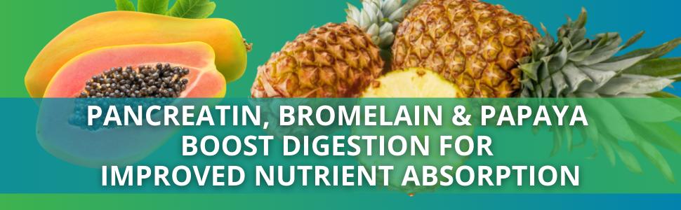 Alka-Pan - Pancreatin, Bromelain amp; Papaya  boost digestion