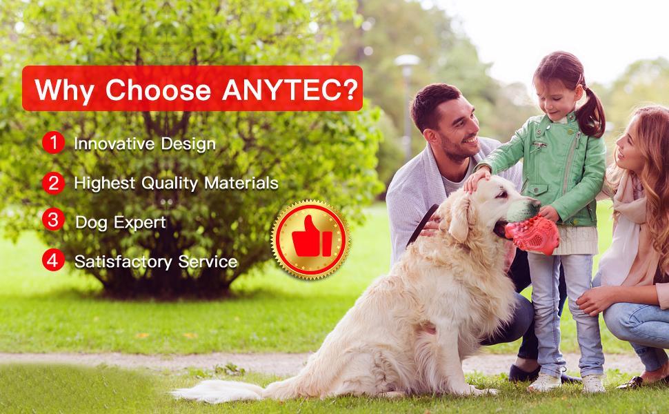 Why Choose ANYTEC?