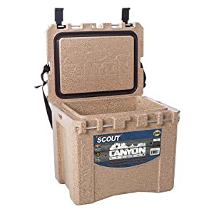 scout open view
