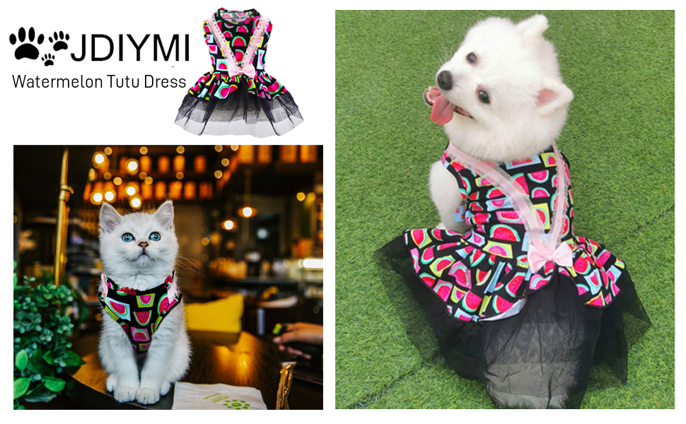 dog dresses for small dogs girls