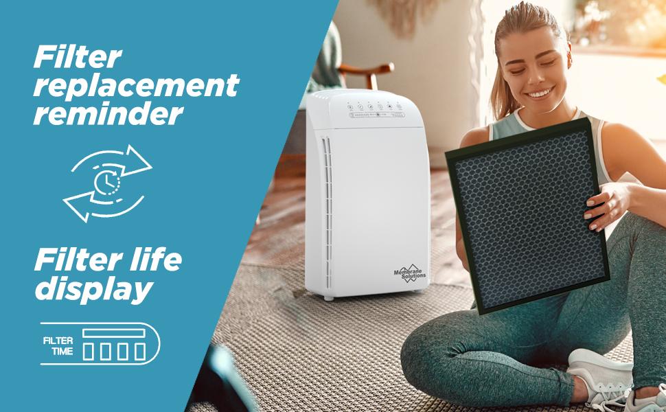 MSA3 Air Filter