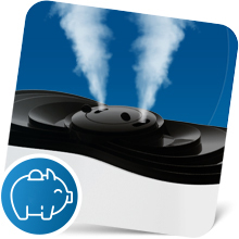 Large humidifier with adjustable mist output