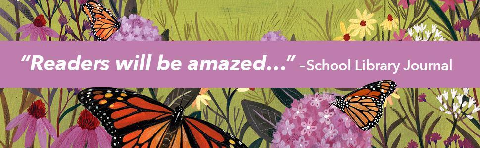 Butterflies amongst flowers in field