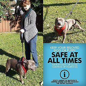 Primal Pet Gear Double Handle Dog Leash