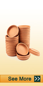 2 inch clay saucer