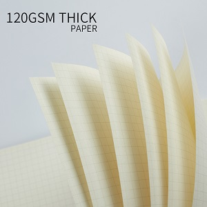 Thick Graph Paper