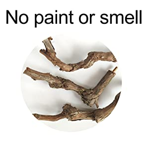 No paint or smell