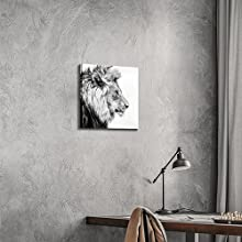 Lion Pictures Wall Art