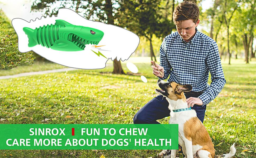 DOG SQUEAKY CHEW TOY TOOTHBRUSH