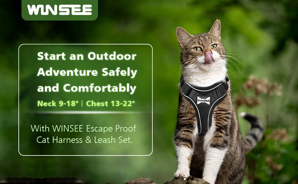 winsee cat harness and leash set