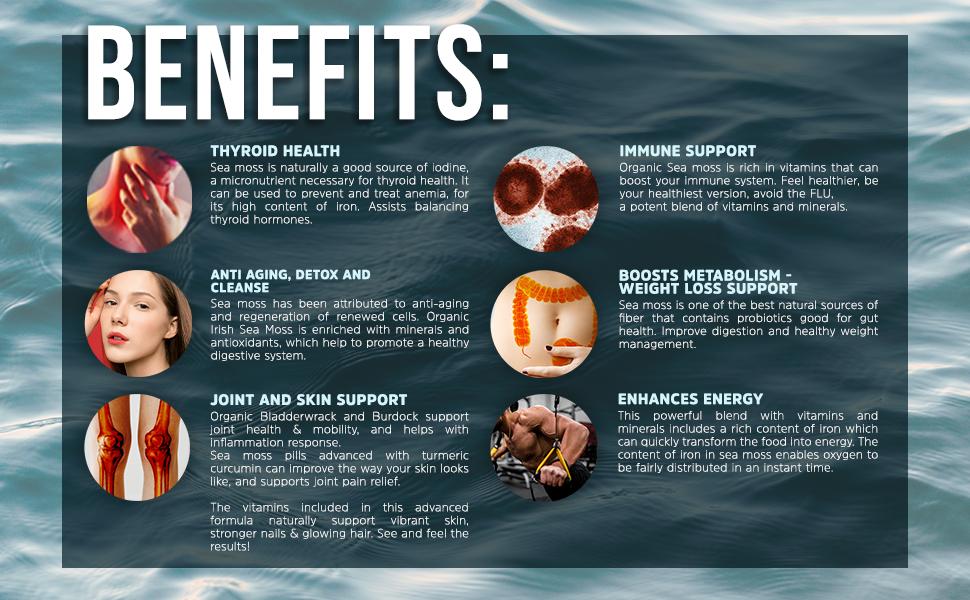 Organic irish sea moss powder benefits