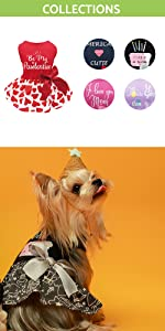 dog dress for small dogs