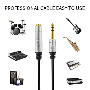 1/4 extension cable
