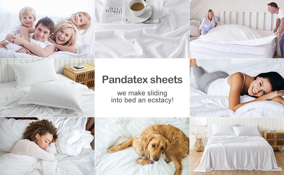 Pandatex Sheets