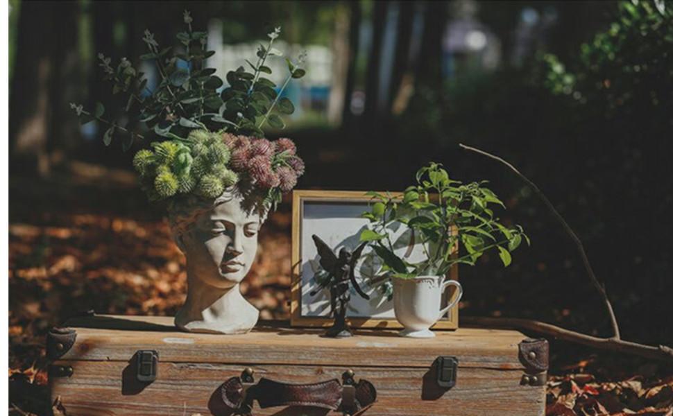face Planter pot