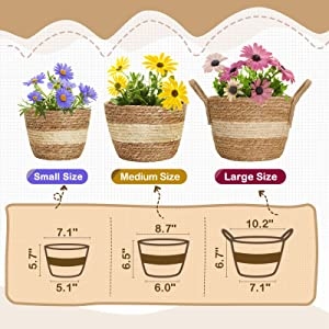 Greenstell Hanging Planters with Planter Basket