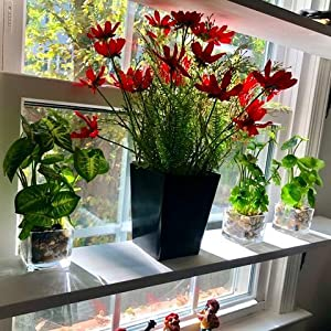 aritifial plants