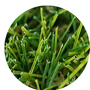 Product grass wire shape