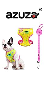 floral head in harness and leash set