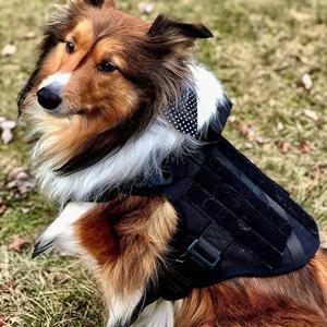 black tactical dog harness