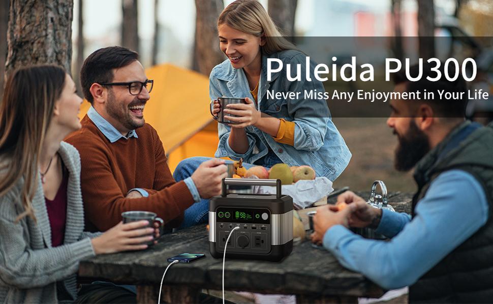 Puleida PU300