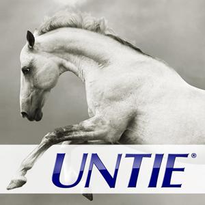 Untie horse equine