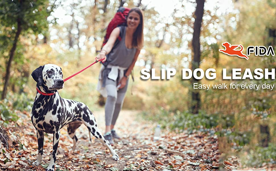 Slip dog lead