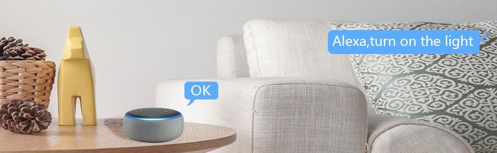 WLAN Alexa lichtschakelaar