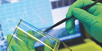 Graphene comprises of carbon atoms arranged in a  planar thin film.