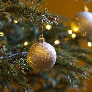 Christmas lanyard