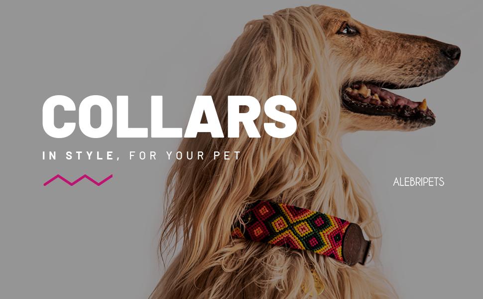 Pet collar, dog collar, handmade pet collar, leash and collar
