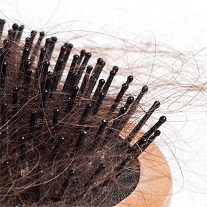 wig brush for women