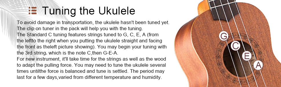 How to tune your ukulelee