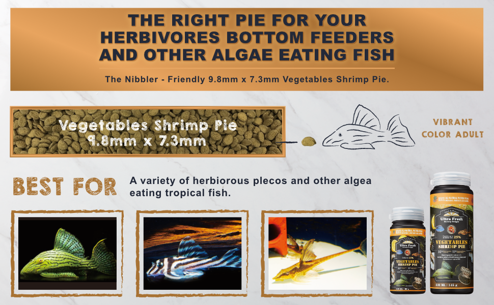 pleco wafers, pleco food, algae wafers, algae wafers fish food
