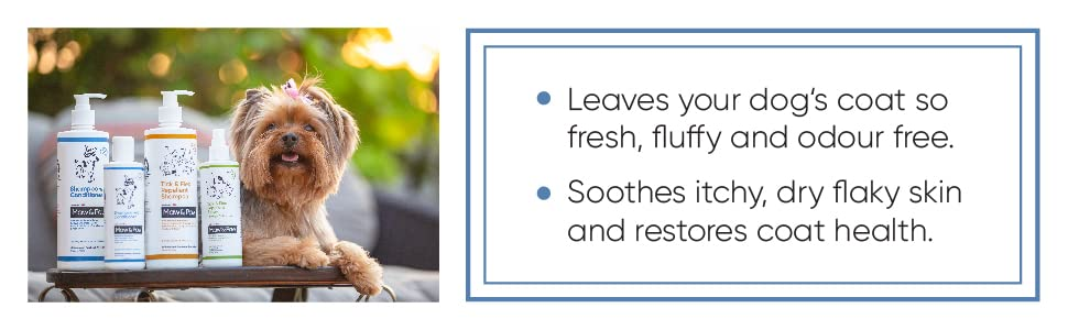 conditioning shampoo for dogs, anti tick flea shampoo,  Puppy shampoo