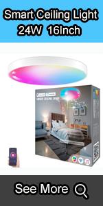 smart ceiling light