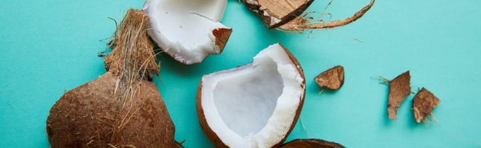 Noix de coco coupé, éclaté