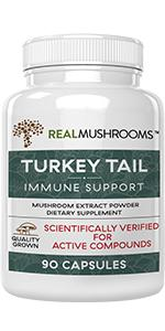 real mushrooms turkey tail