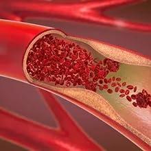 promote blood flow
