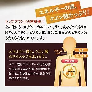 クエン酸はエネルギーの源!クエン酸回路って何?クエン酸はなぜ疲労回復にいいのかを説明します!