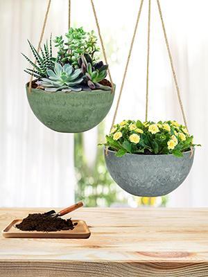 hanging planters indoor