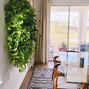 Indoor wall planting