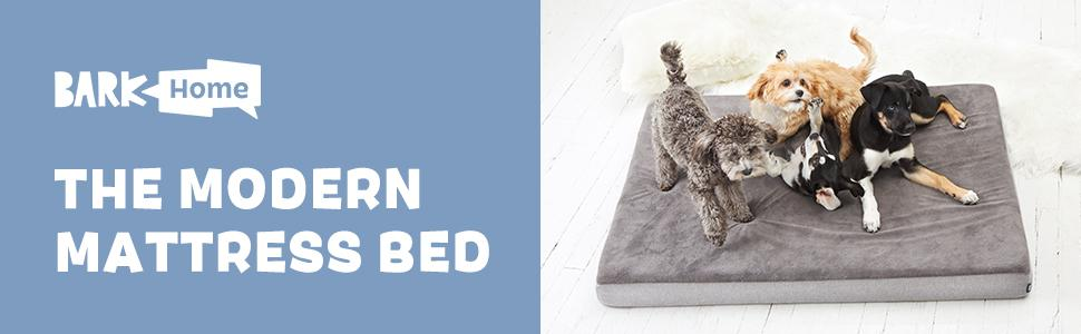 barkbox mattress bed