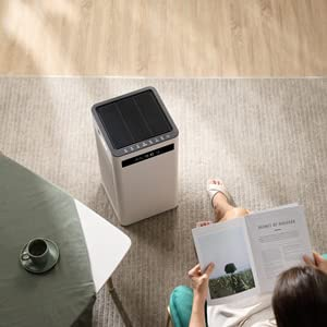 best air purifiers for home, large air purifier, pet air purifiers for home