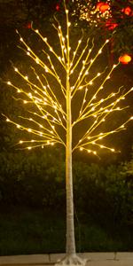 7ft birch tree