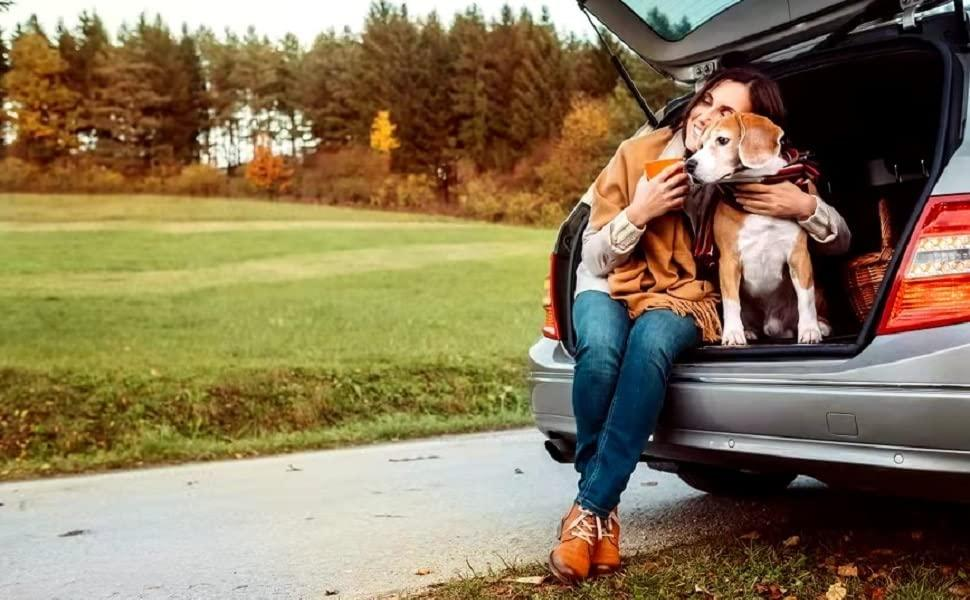 Petalage dog seat cover