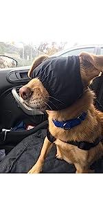 Dog eye muzzles