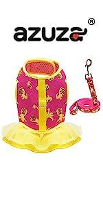 pineapple harness dress and leash set
