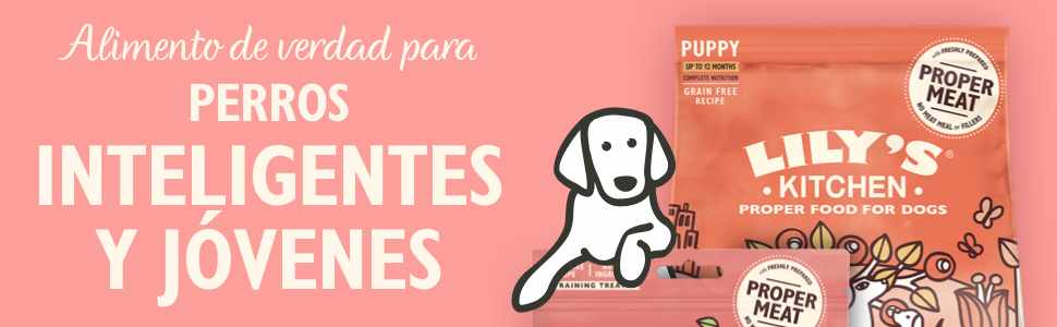 pet foods for puppy