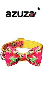 pineapple bowtie dog collar